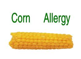 Corn allergy