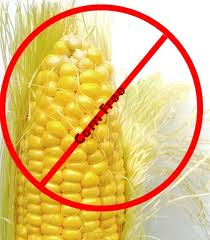 No corn