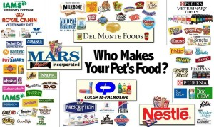 Roger Biduk - Pet foods to avoid