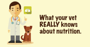 Roger Biduk - Veterinarian what knows about nutrition