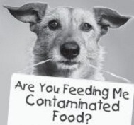 dog contaminated food sign