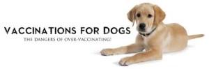 Roger Biduk - Vaccinations dog overvaccinating dangerous