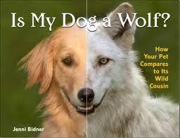 dog wolf