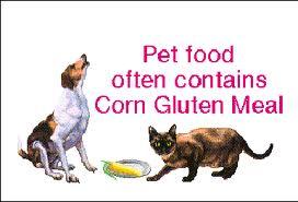 Corn gluten pets