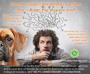Roger Biduk - Bordetella causes the disease; Dr. Peter Dobias 30