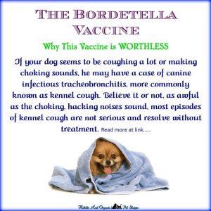 Roger Biduk - Bordetella worthless vaccine; Holistic ansd Organix Pet Shoppe