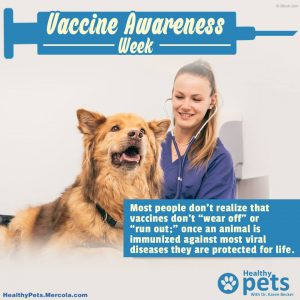 Roger Biduk - Vaccinations most people don't know vaccinations don't wear out; Dr. Karen becker